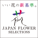 いい花の新基準。JAPAN FLOWER SELECTIONS